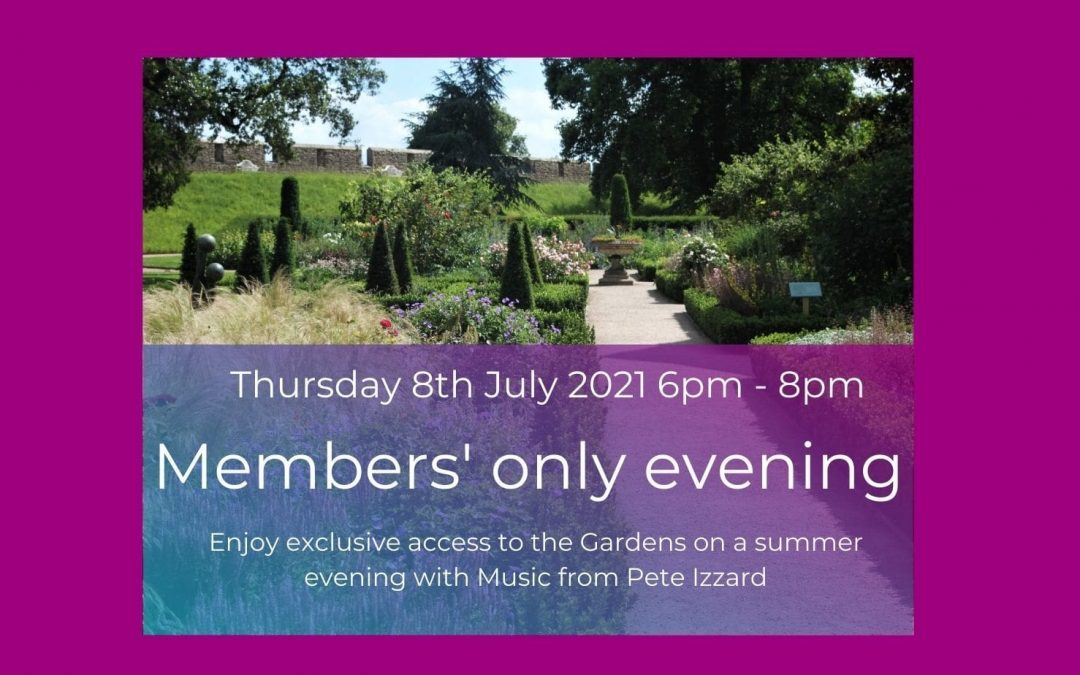 Members' only evening July 2021